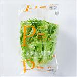 エスジーグリーンハウス 福岡県産 うるおい野菜 ピュアヴェール 1袋