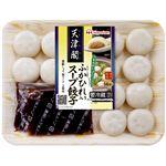日本ハム 天津閣 ふかひれ入りスープ餃子 14個入