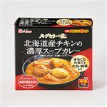ハウス スープカリーの匠 北海道産チキンの濃厚スープカレー 中辛 1人前360g
