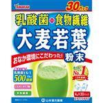 山本漢方 お徳用 乳酸菌 大麦若葉 ステックタイプ 4g×30包