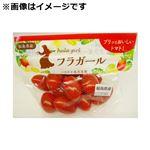【9/17(金)~9/20(月)ご配送限り】 福島県などの国内産 ミニトマト(フラガール)1袋